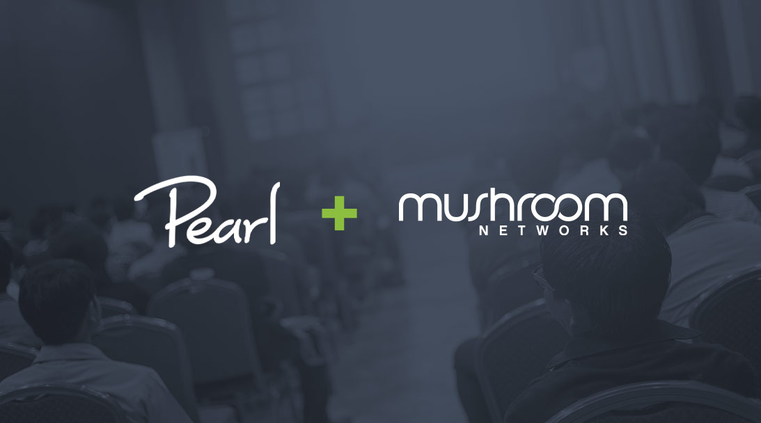 Wireless LTE streaming for live events with Pearl & Mushroom Networks image